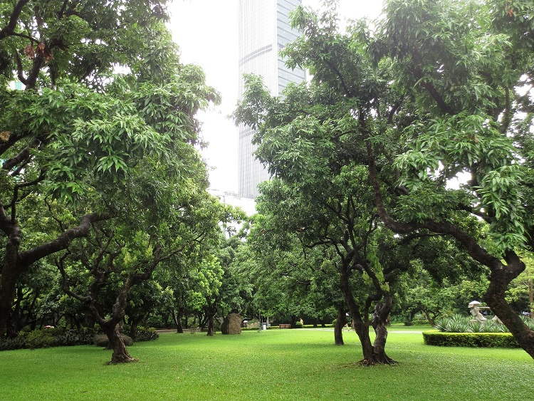 Picturesque park in Shenzhen China.