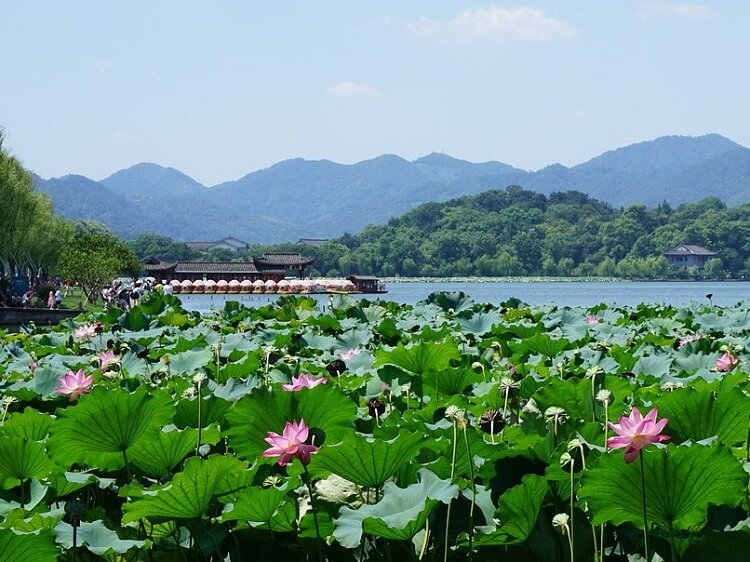 Want to teach English in Hangzhou? 6 tips for first timers