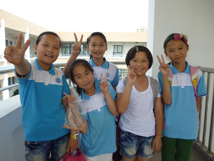 Primary school students in China